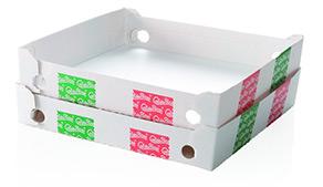 Scatola Pizza KBSR